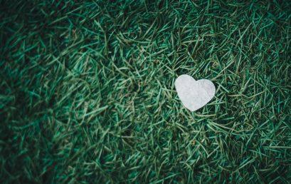 Fait ici avec amour